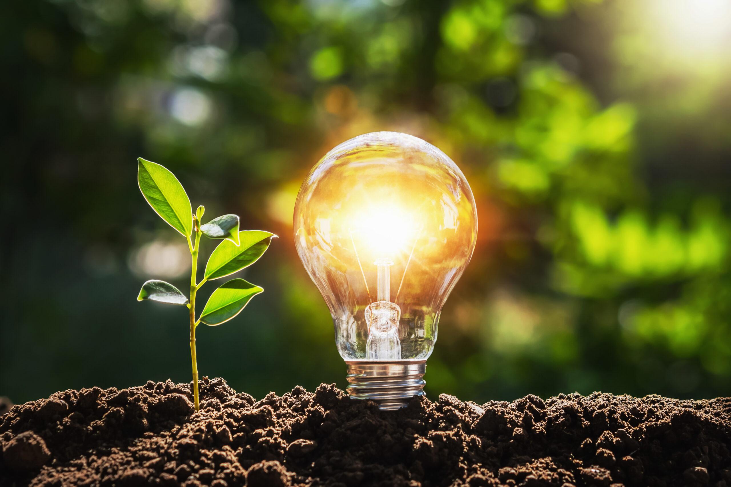 a-energia-solar-alia-sustentabilidade-e-transformacao-social-no-brasil